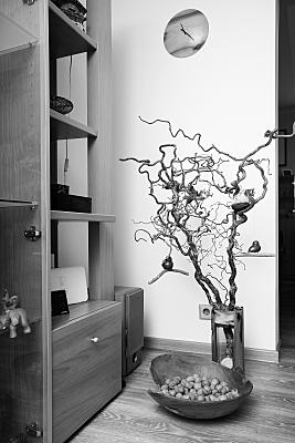 Interiorfoto in schwarz-weiss